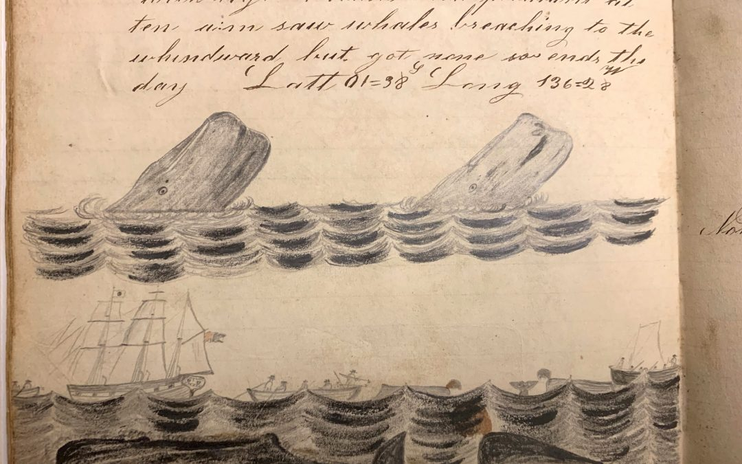 Whaling Voyage Logs Recently Acquired